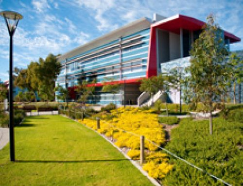 Perth Institute of Bussiness and Technology (PIBT)